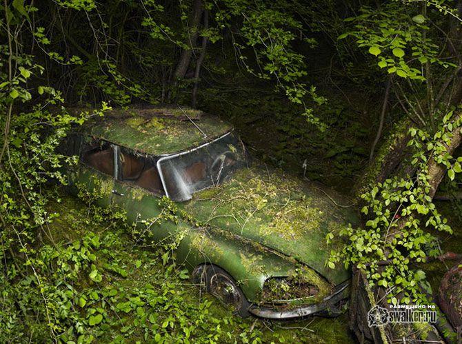 Всеми забытые автомобили