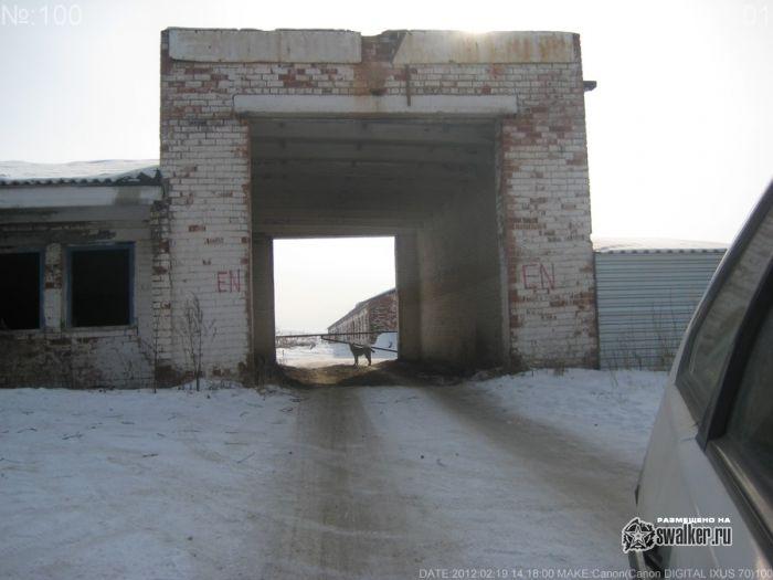 Полу заброшенный сельхоз в Каменск-Уральском